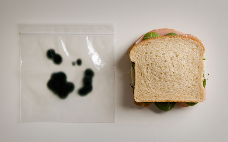 Anti-Theft Moldy Lunch Bags 1