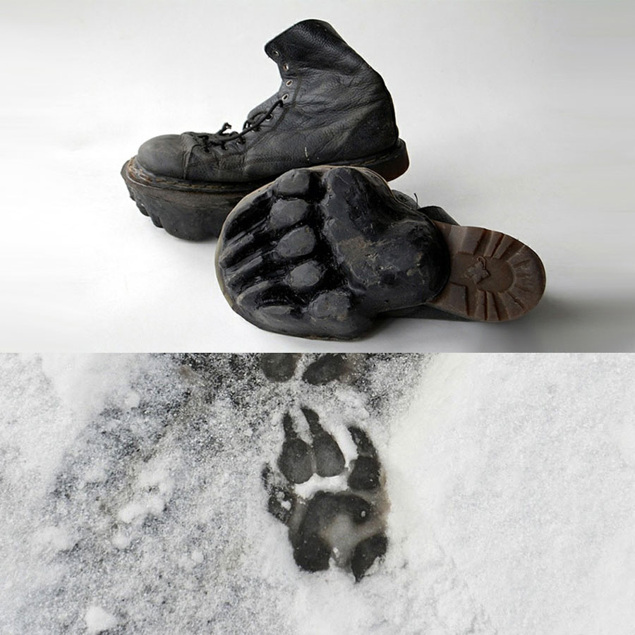 Bear Track Shoes