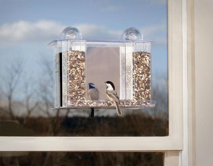 bird feeder with one way mirror. Black Bedroom Furniture Sets. Home Design Ideas