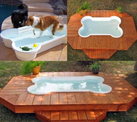 Best Wet Dog Food >> Bone Shaped Dog Pool