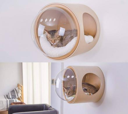 Bubble Window Wall-Mounted Cat Bed