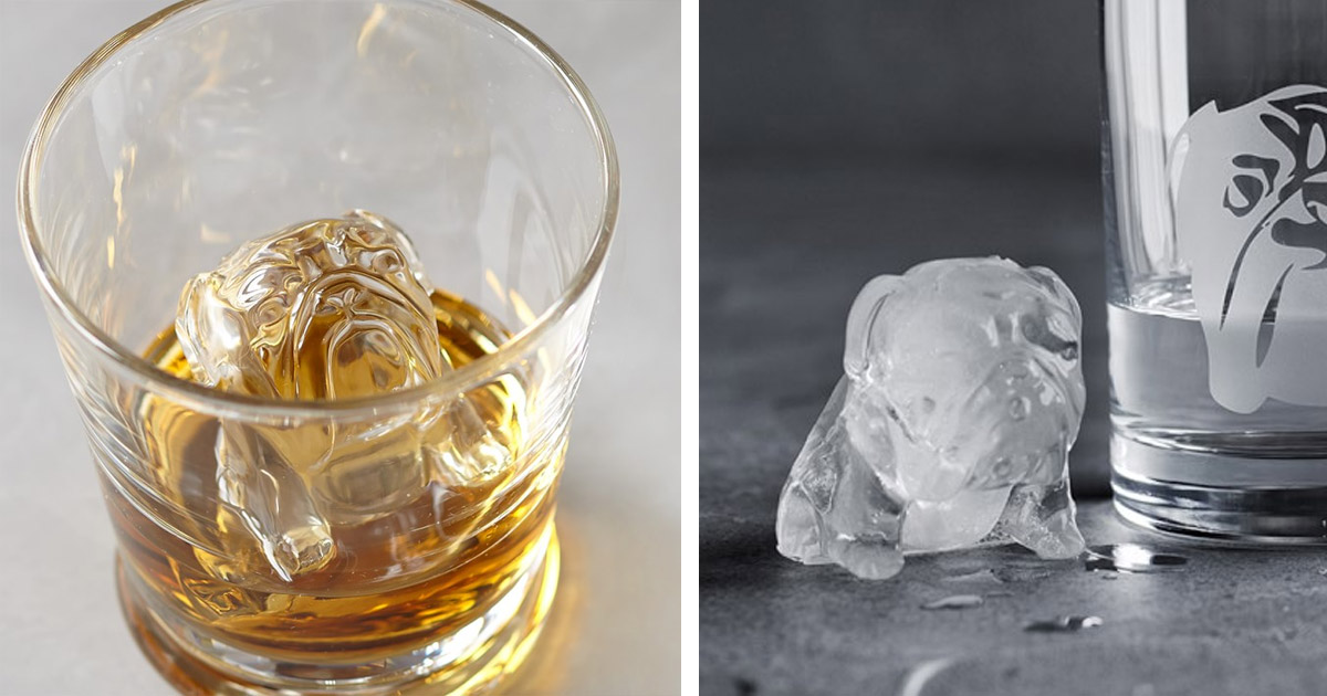 This Bulldog Ice Mold Makes Bulldog Shaped Ice Cubes