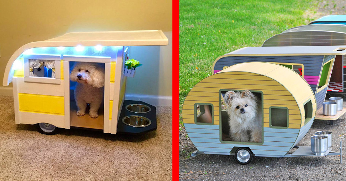 There Are Now Camping Trailer Dog Beds, So Your Pooch Can Enjoy The RV Lifestyle