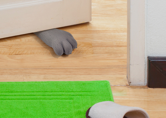 Cat Paw Doorstop 1