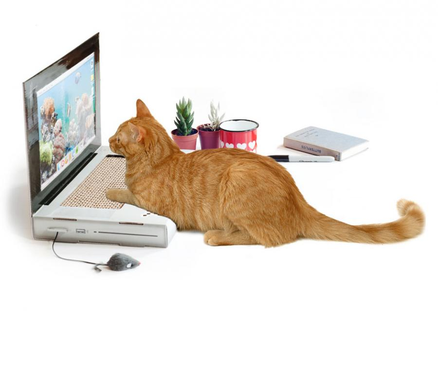 The Cat Scratch Laptop Is A Toy Laptop For Cats