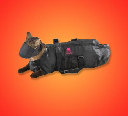 Cat Straight Jacket and Muzzle