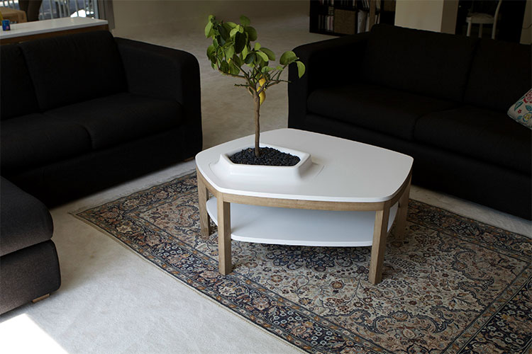 Volcane Feet Coffee Table With Planter