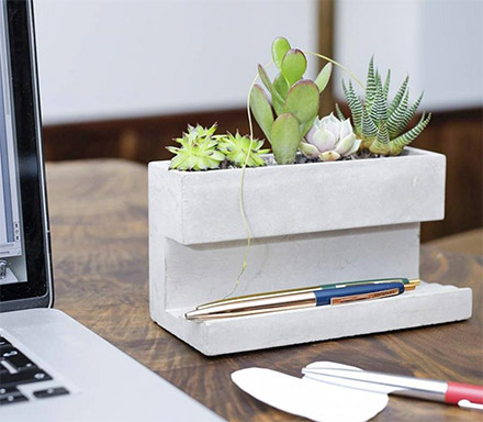 Concrete Desk Planter and Pen Holder