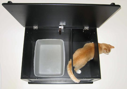 Designer Kitty Litter Box 1