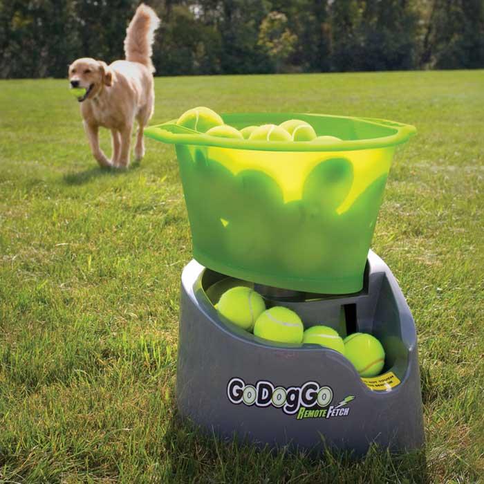 dog ball fetching machine