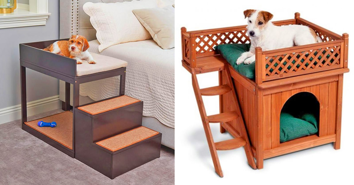 Dog Bedside Bunk An Elevated Dog Bed With Stairs