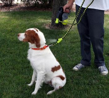Hyper Pet Cool Down Doggie: A Dog Leash With A Misting Water Sprayer
