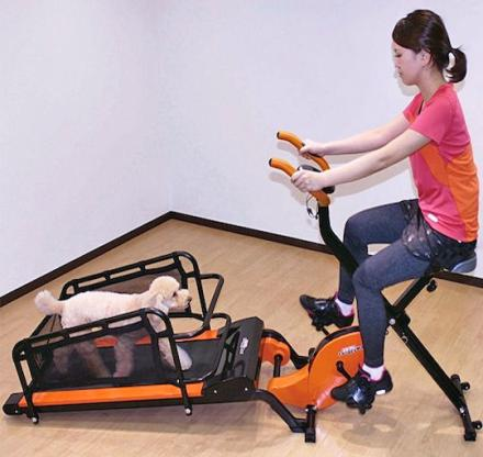 Dual Dog Exercise Treadmill Lets You Exercise With Your Pooch