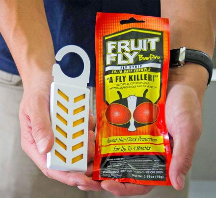 This Genius Fruit Fly Killer Eliminates All Flies and Bugs Within The Area In Seconds