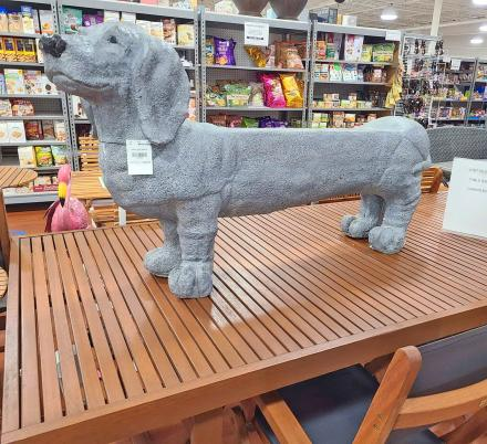 Every Dachshund Owner Probably Needs One Of These Wiener Dog Garden Benches