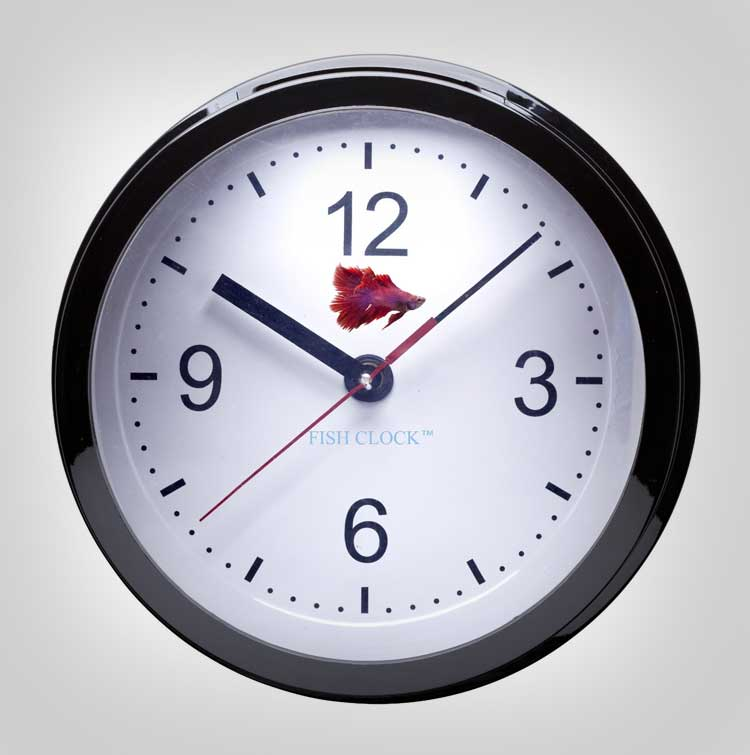 Fish Tank Aquarium Clock 2