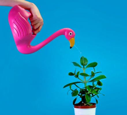 Flamingo Shaped Watering Can