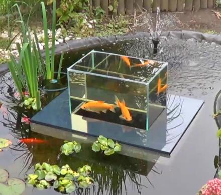 Floating fish koi pond observatory lets you view your fish for Koi pond you can swim in