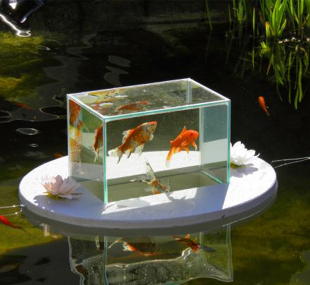 Floating Fish Observatory Lets You View Your Fish Above The Water Line