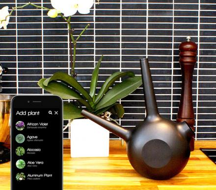 Freiya Is a Smart Watering Can That Reminds You When To Water Your Plants