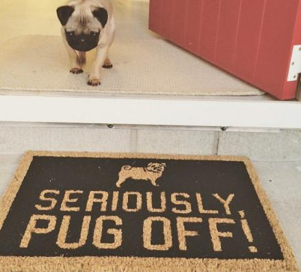 16 Clever Doormats Your Stoop Needs Immediately