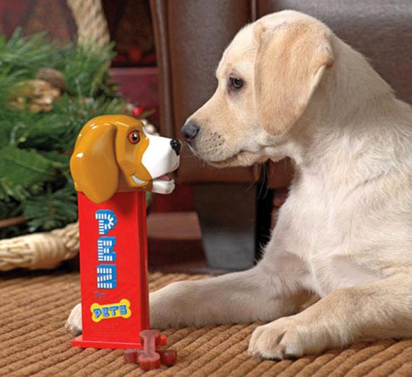 Dog Treat Dispenser >> Giant Dog Pez Dispenser Dispenses Bone Shaped Dog Treats