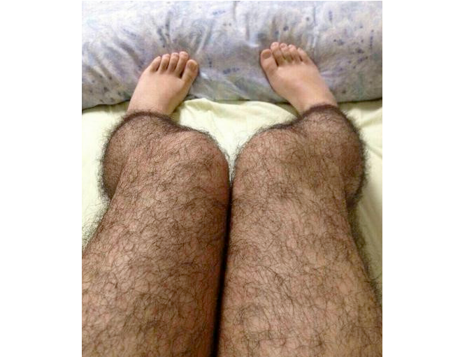 Hairy Legs Stockings