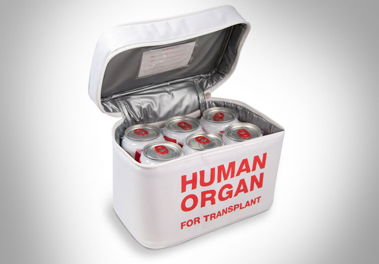 Human Organ Lunchbox