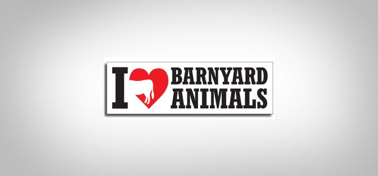 I Love Barnyard Animals Car Magnet
