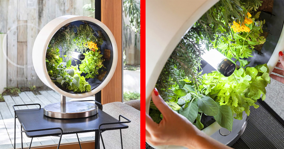Incredible Rotating NASA-Inspired Indoor Garden Provides Full Garden In Just 1.7 Feet