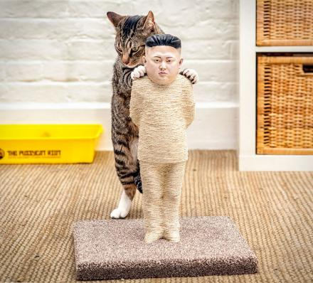 Kim Jong-Un Cat Scratching Post
