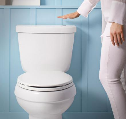 Kohler Touchless Toilet Flusher