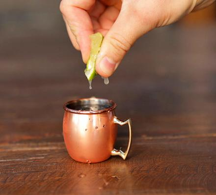 Mini Copper Moscow Mule Mug Shot Glasses (Set of 4)