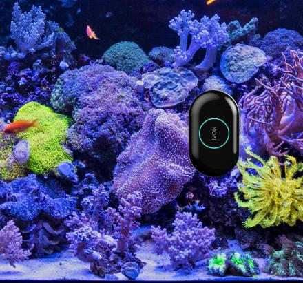 MOAI: A Robotic Camera and Cleaner For Your Aquarium