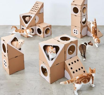 You Can Create The Ultimate Cat Playground With This Mix And Match Modular Collection