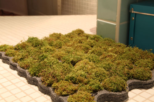 Charming Moss Bathroom Carpet Rug Moss Bathroom Carpet Rug ...