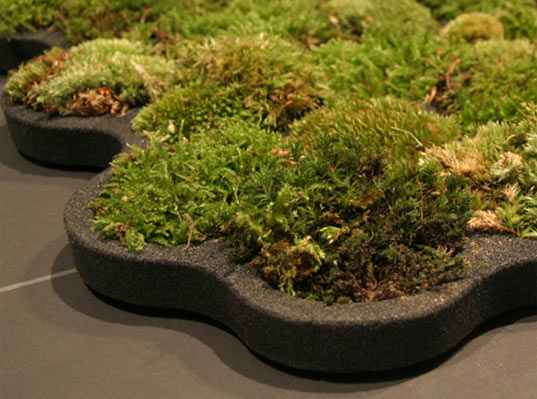 ... Moss Bathroom Carpet Rug