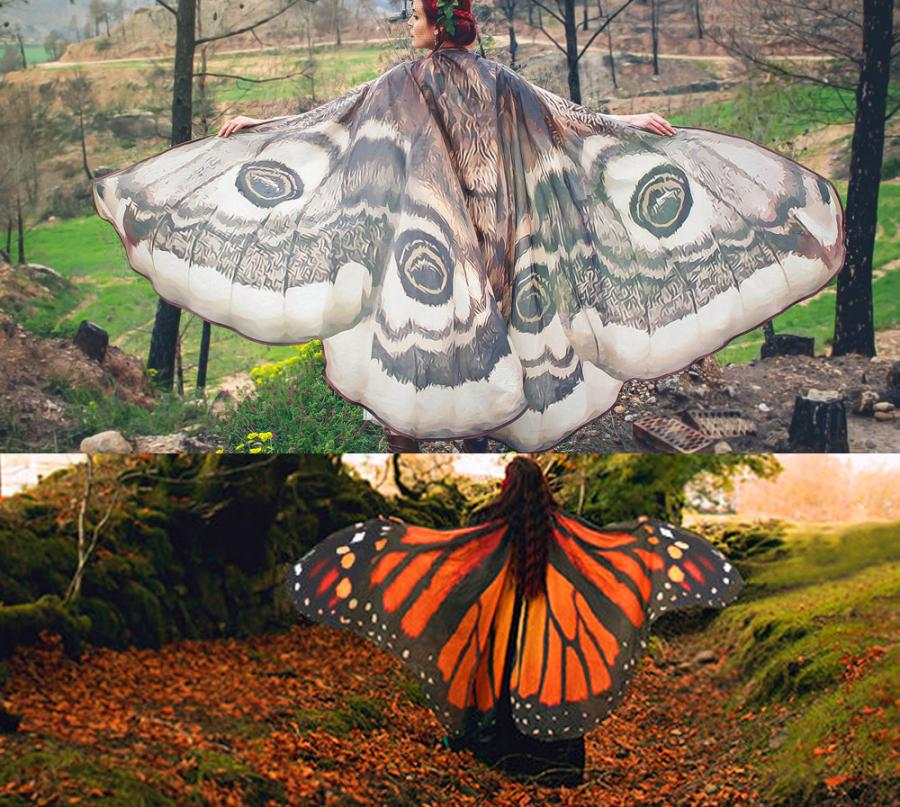 Moth and Butterfly Cape Cloaks
