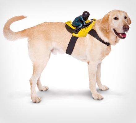 Motorcycle Rider Dog Costume Harness