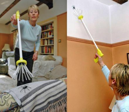 My Critter Catcher: Easily Catch and Release Spiders In Your Home