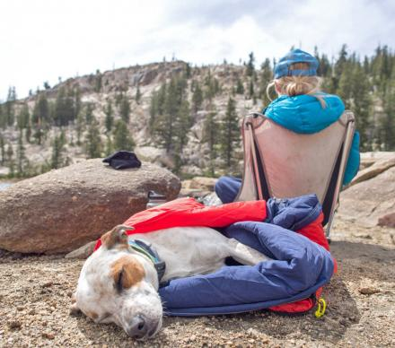 Noblecamper 2-in-1 Dog Sleeping Bag and Dog Bed