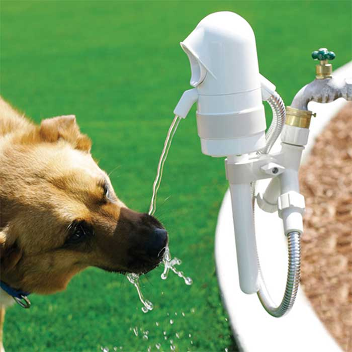 WaterDog: A Motion Sensing Outdoor Dog Water Fountain