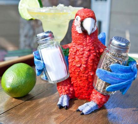 Parrot Holding Salt and Pepper Shaker Set