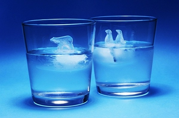 Penguin and Polar Bear Ice Cubes 1