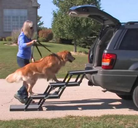 These Portable Pet Loader Stairs Help Small Or Elderly Dogs Into The Car