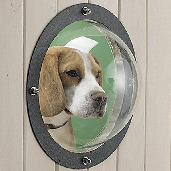 Pet Peek Fence Window For Dogs