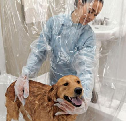 The Pet Shower Curtain With Bubble Boy Arms Lets You Wash Your Dog From The  Comfort Of The Other Side Of The Shower Curtain Using 2 Large Bubble Boy ...