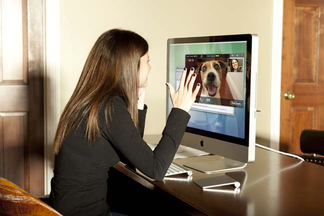 PetChatz Pet Webcam and Treat Dispenser