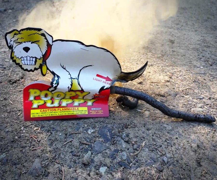 Pooping Dog Fireworks