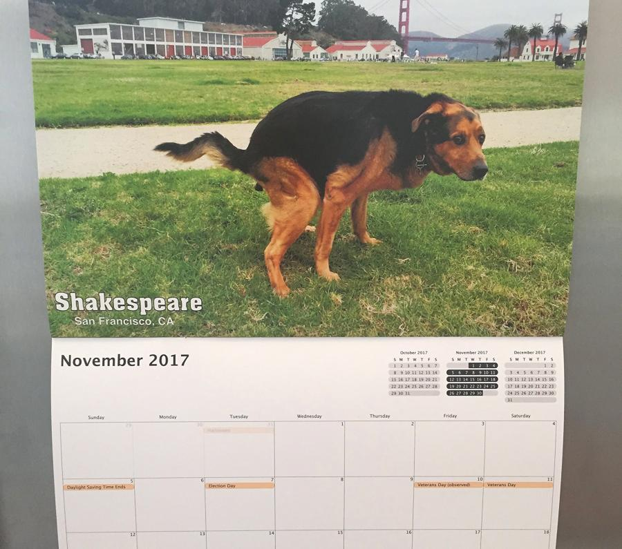 Pooping Pooches Calendar 2017